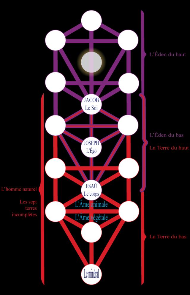 03wa197612 Figure 12 • L'Éden et la Terre.